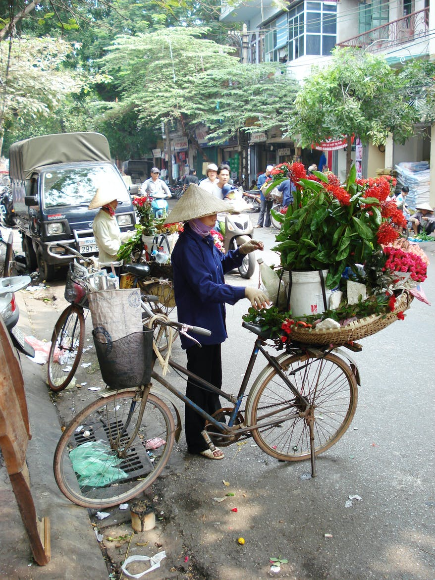 A photo of someone selling flowers from their bicycle in Vietnam