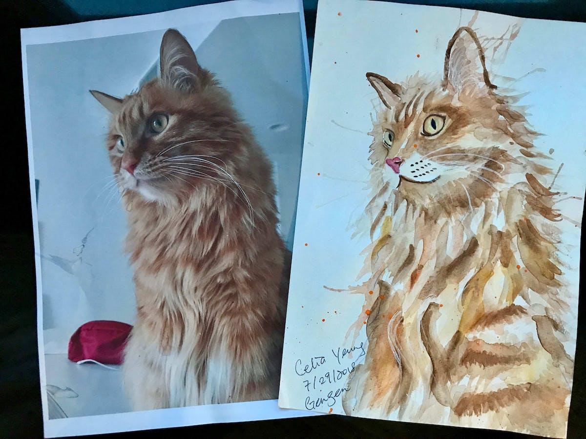 Celia's sketching: Watercolor painting of her cat Gengen