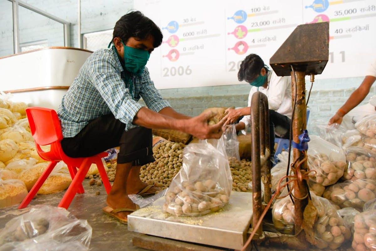 The Food Express team at Akhand Jyoti Eye Hospital, Bihar, India, package up potatoes