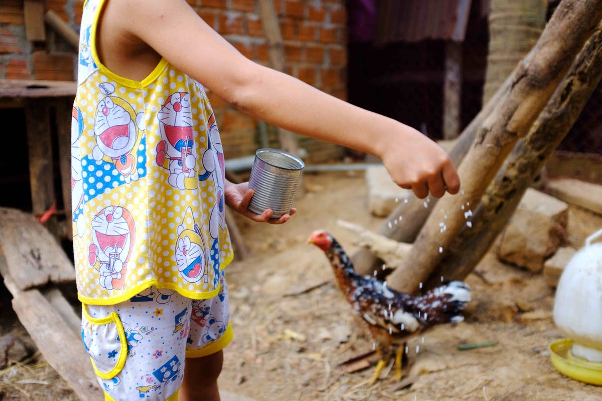 8-year-old strabismus patient Phuong from Vietnam feeding her family's chicken